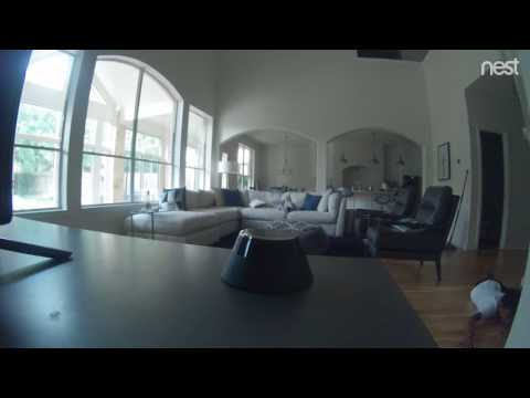 My friend installed a Nest cam to keep his kid from sneaking TV after bedtime. This is the last thing it recorded.