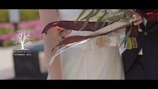 WEDDING SHOWREEL 2015