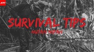 Video SURVIVAL TIPS 8 - Hutan Nipah MP3, 3GP, MP4, WEBM, AVI, FLV April 2019