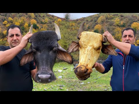 GREAT BISON HEAD SOUP RECIPE | TRADITIONAL DELICIOUS DISH OF SOUP KHASH FROM THE COW HEAD