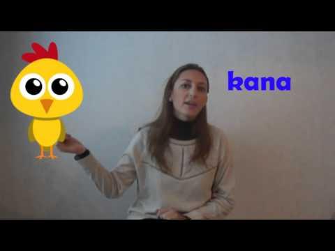 Palabras que suenan igual en finés y español | Luli en Finlandia