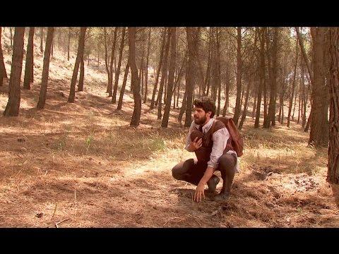 il segreto - bosco e béltram stanno per essere schiacciati da un albero