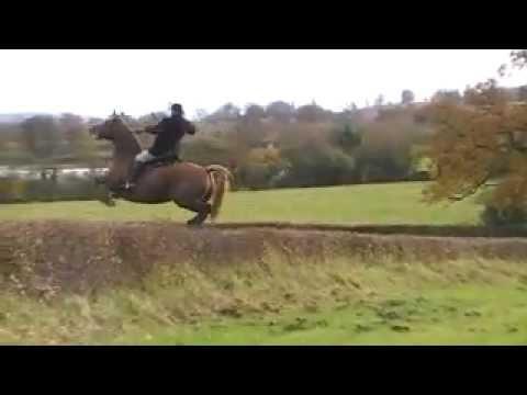 Taunton Vale over hedges 4 - Thời lượng: 68 giây.