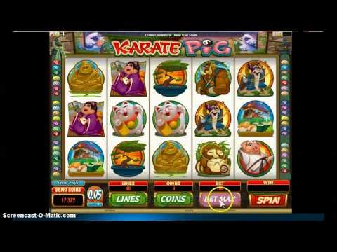 karate pig slot and bonus game