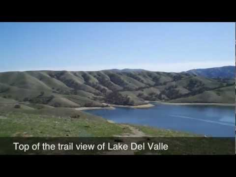 Livermore Ca Hiking Trail Behind Wente Winery