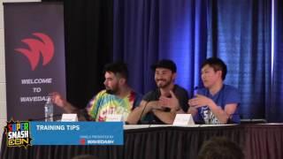 Super Smash Con 2016 Panels – Training Tips