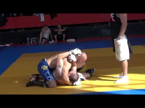 pitbull fights