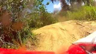 5. Riding Through Some Palmettos On My 2013 Honda TRX400X