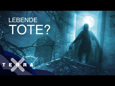 """Zombies: Gibt es """"lebende Tote""""?"""