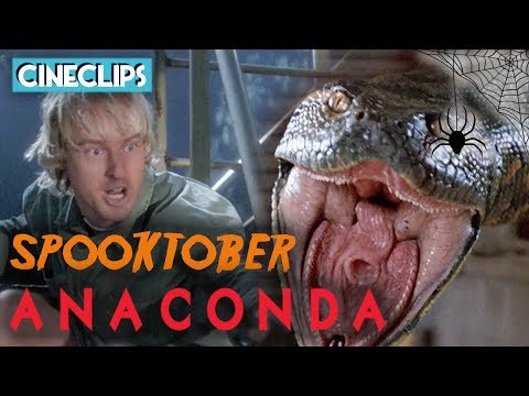 Anaconda Attacks! | Anaconda | CineClips
