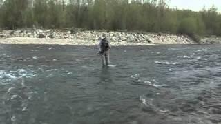 Fliegenfischen am Schwarze Dunajec Fluss in Polen auf Fruhjahr