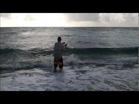 Snook on the Beach – FL 8/11