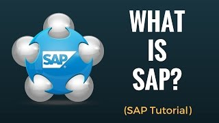 What is SAP ?