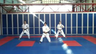 Issshinryu Karate Team