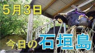5月3日の石垣島天気