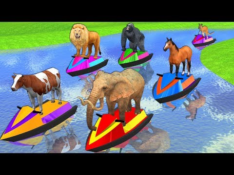 Learn Wild Animals On Speed Boat Race Video For Kids - Learn Animals Names & Sounds For Toddlers