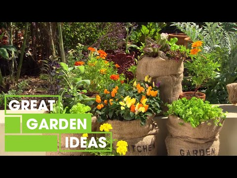 3 Tips For Growing Plants | Gardening | Great Home Ideas
