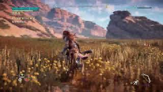Horizon zero Dawn new game +