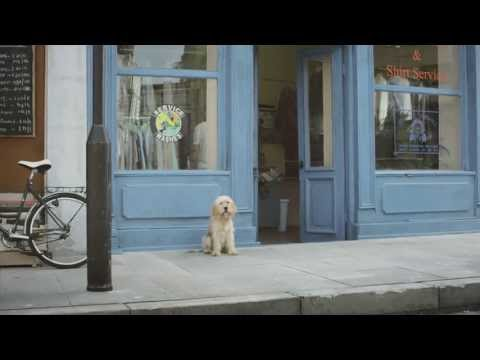 O2 4G – Be more dog TV advert