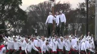 Climbing On The Pole - Awesome Sport