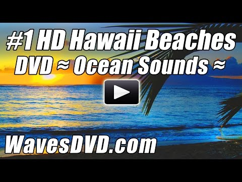 Hawaiian Music - RELAX NOW. Enjoy our #1 Best Selling