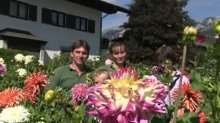 #866 Dankeschön an die Dahlienfamilie Peter Haslhofer und Theresia Dietl