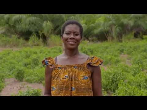 Le film de la campagne #weAAAre montre l'Adaptation de l'Agriculture Africaine aux changements climatiques en action