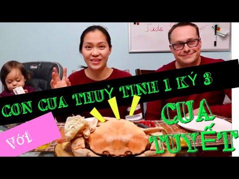 Vlog 572 ll VỢ ĂN CUA THUỶ TINH, CHỒNG ĂN CUA TUYẾT, cua nào ngon hơn ?? - Thời lượng: 22 phút.