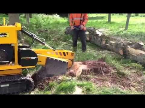 Predator P38R stump grinder