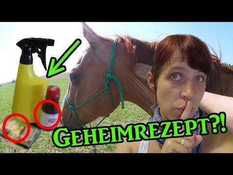 [DiY] Mähnen- und Fliegenspray ganz einfach selber machen - zwei Geheimrezepte | Serenity Horses