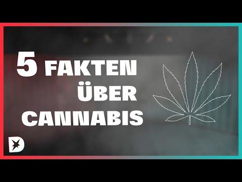 5 Fakten über Cannabis