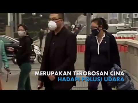 Hutan Vertikal Pertama Di Asia, Solusi Polusi Udara