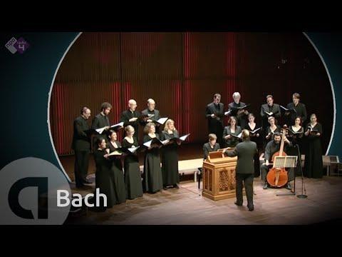 motet - J.S. Bach: Motet BWV 225 'Singet dem Herrn' Vocalconsort Berlin o.l.v. Daniel Reuss Opgenomen tijdens de BachDag i.s.m. de Organisatie Oude Muziek 29 januari...