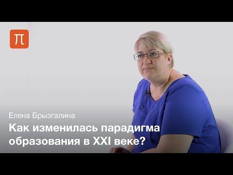 Компетентностный подход в системе образования — Елена Брызгалина (видео)
