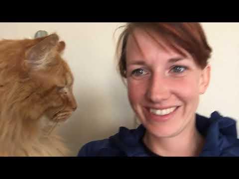 WhalePants Vlog Pt. 31:  Texas and Arizona Adventure