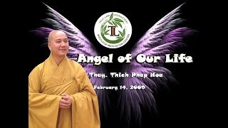 Angle of Our Life - Thay. Thich Phap Hoa (Feb.14, 2009)