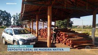 Polícia Ambiental flagra depósito ilegal de madeira nativa