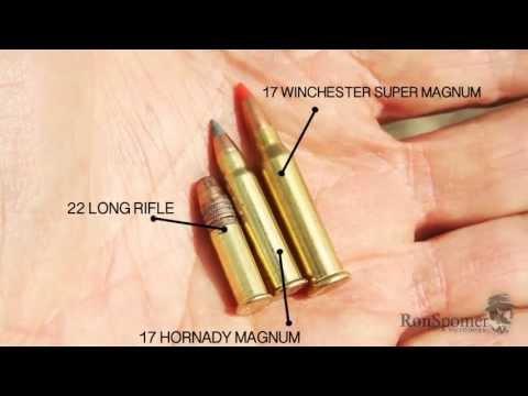 Worlds Most Powerful Rimfire -- 17 Winchester Super Magnum