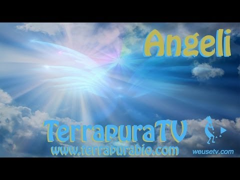 Angeli – Vivere nella serenità con l'aiuto degli angeli (angel life coach)