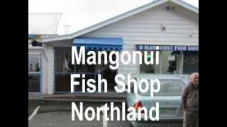 Mangonui New Zealand  City new picture : World Famous Mangonui Fish Shop with Green Rental's New Zealand
