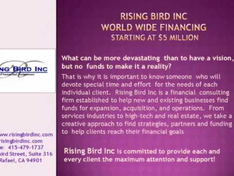 Rising Bird Inc Commercial and Business Capital