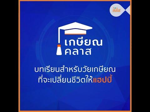 thaihealth เกษียณคลาส บทเรียนสำหรับวัยเกษียณที่จะเปลี่ยนชีวิตให้แฮปปี้