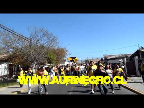 AHP COQUIMBO UNIDO - cerena 2013 - Al Hueso Pirata - Coquimbo Unido