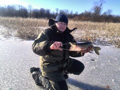 рыбалка в нововаршавском районе