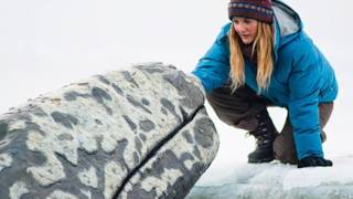 Nonton Big Miracle Movie Review  Beyond The Trailer Film Subtitle Indonesia Streaming Movie Download