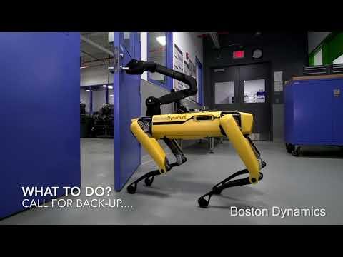 Der Roboter-Hund