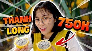 Video Misthy lần đầu thử Thanh long mắc nhất Việt Nam: 750.000    WHAT THE FOOD MP3, 3GP, MP4, WEBM, AVI, FLV Juli 2019