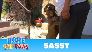 Good Samaritans knew that this puppy needed extra help. by Hope For Paws