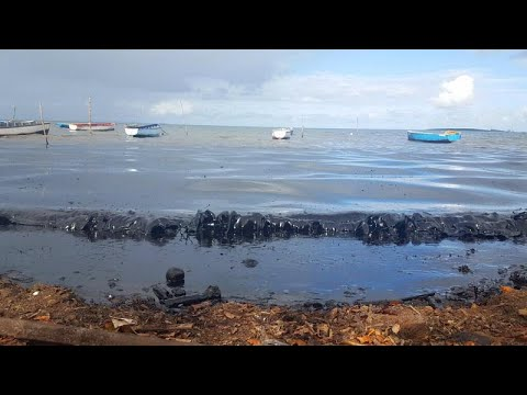 Μαυρίκιος:Αντιμέτωπος με τεράστια οικολογική καταστροφή…