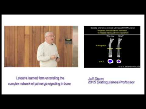 Purinergic Signaling in Bone - Jeff Dixon, Distinguished Professor 2015
